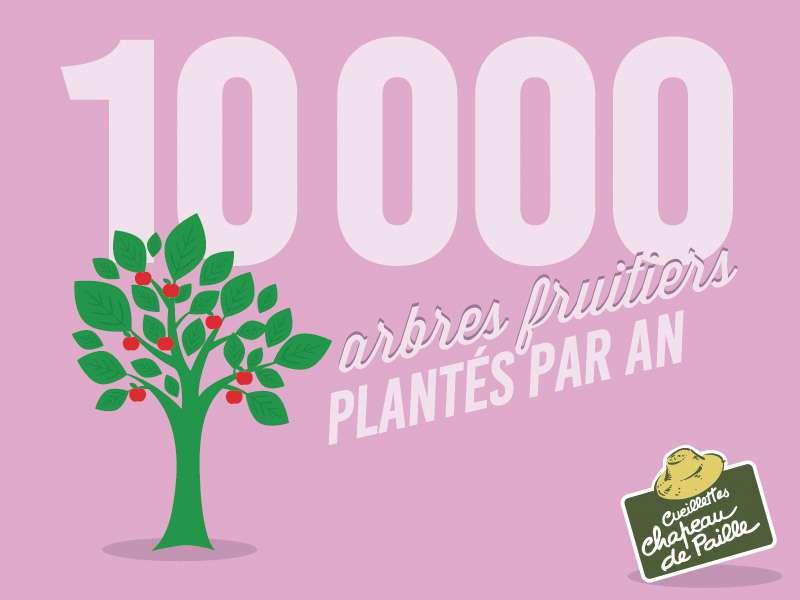 10 000 arbres fruitiers plantés par an