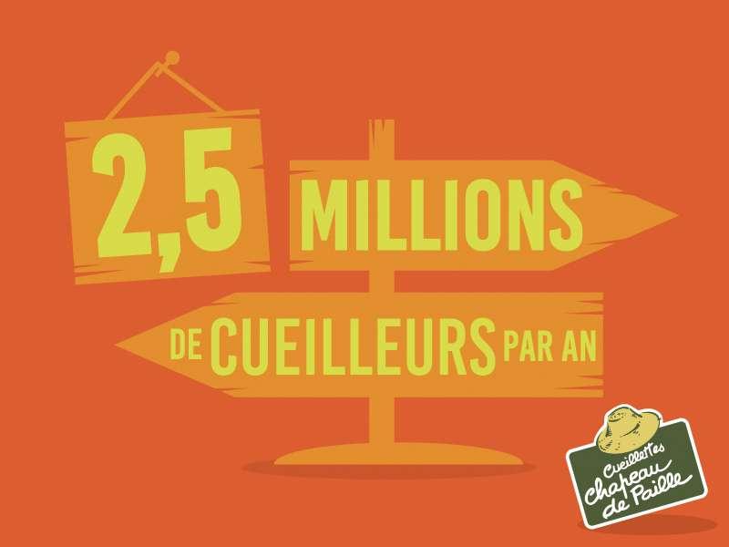 2,5 millions de cueilleurs par an