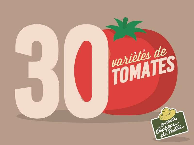30 variétés de tomates
